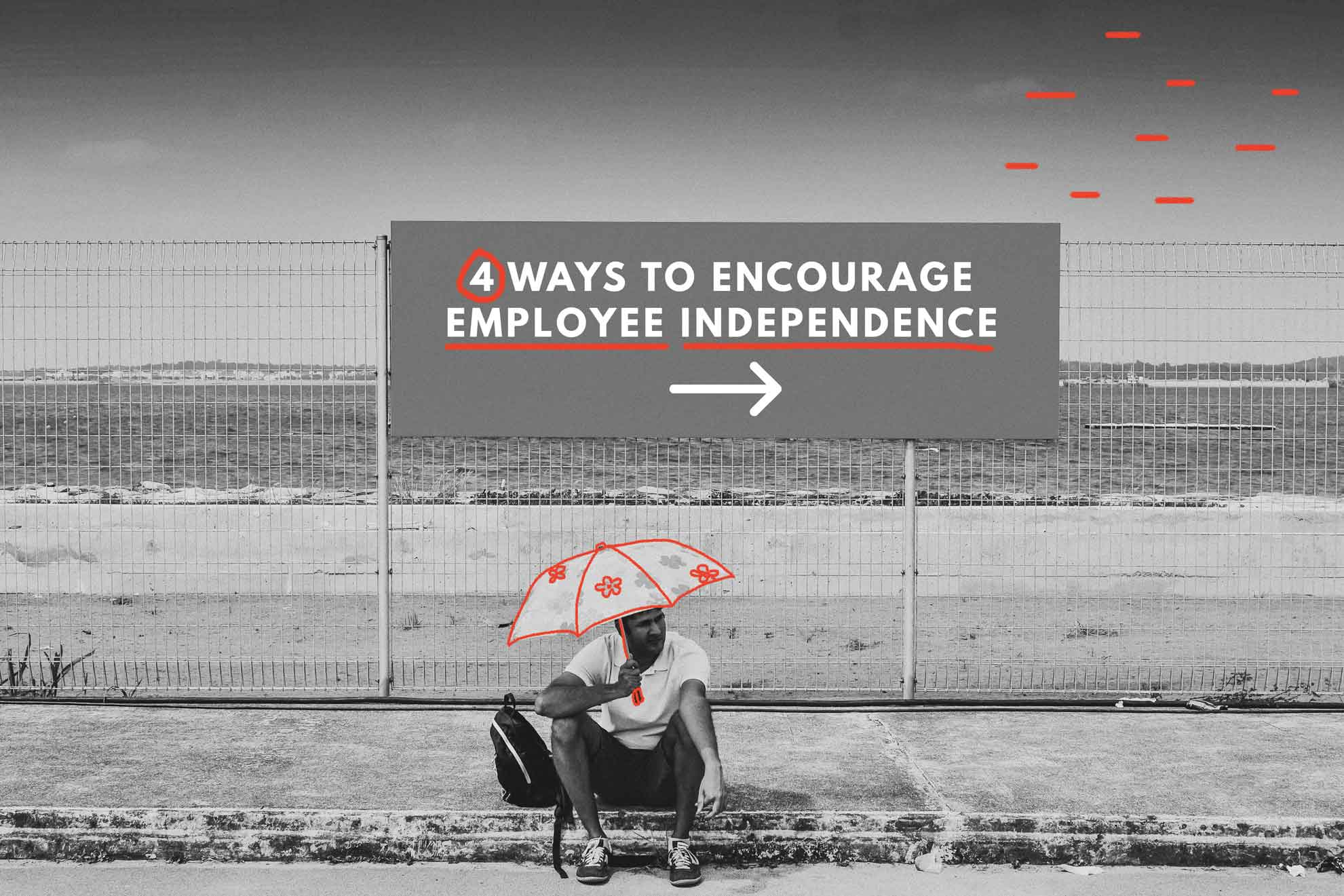 Employee Independence - 4 Ways to encourage it in the workplace